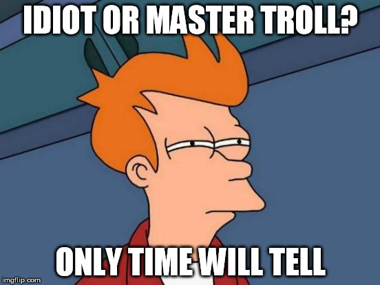 Futurama Fry | IDIOT OR MASTER TROLL? ONLY TIME WILL TELL | image tagged in memes,futurama fry | made w/ Imgflip meme maker