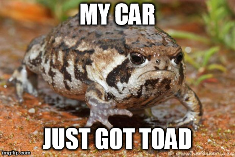 Grumpy Toad Meme | MY CAR JUST GOT TOAD | image tagged in grumpy toad,AdviceAnimals | made w/ Imgflip meme maker