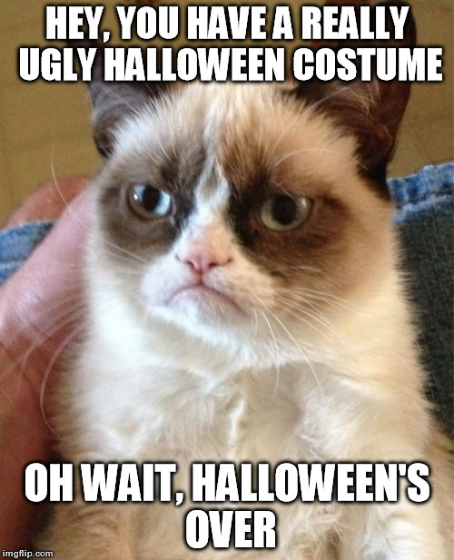Grumpy Cat Meme | HEY, YOU HAVE A REALLY UGLY HALLOWEEN COSTUME OH WAIT, HALLOWEEN'S OVER | image tagged in memes,grumpy cat | made w/ Imgflip meme maker