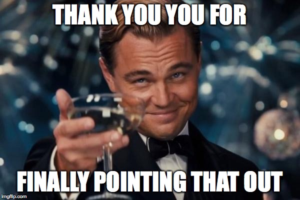 Leonardo Dicaprio Cheers Meme | THANK YOU YOU FOR FINALLY POINTING THAT OUT | image tagged in memes,leonardo dicaprio cheers | made w/ Imgflip meme maker
