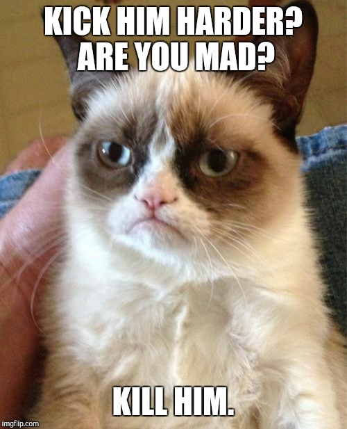 Grumpy Cat Meme | KICK HIM HARDER? ARE YOU MAD? KILL HIM. | image tagged in memes,grumpy cat | made w/ Imgflip meme maker