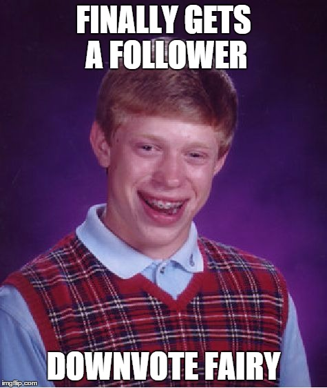 All imgflip users in a nutshell | FINALLY GETS A FOLLOWER DOWNVOTE FAIRY | image tagged in memes,bad luck brian,funny,downvote fairy,imgflip | made w/ Imgflip meme maker