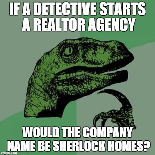 Philosoraptor | IF A DETECTIVE STARTS A REALTOR AGENCY WOULD THE COMPANY NAME BE SHERLOCK HOMES? | image tagged in memes,philosoraptor | made w/ Imgflip meme maker