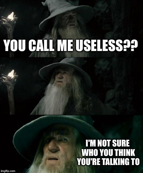 Confused Gandalf Meme | YOU CALL ME USELESS?? I'M NOT SURE WHO YOU THINK YOU'RE TALKING TO | image tagged in memes,confused gandalf | made w/ Imgflip meme maker