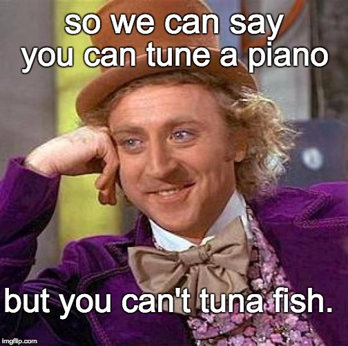 Creepy Condescending Wonka Meme | so we can say but you can't tuna fish. you can tune a piano | image tagged in memes,creepy condescending wonka | made w/ Imgflip meme maker