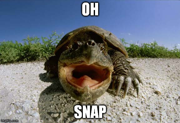 Oh Snap | OH SNAP | image tagged in oh snap | made w/ Imgflip meme maker