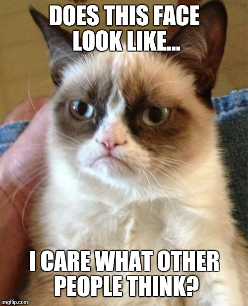 Grumpy Cat Meme | DOES THIS FACE LOOK LIKE... I CARE WHAT OTHER PEOPLE THINK? | image tagged in memes,grumpy cat | made w/ Imgflip meme maker