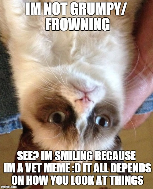 Grumpy Cat Meme | IM NOT GRUMPY/ FROWNING SEE? IM SMILING BECAUSE IM A VET MEME :D IT ALL DEPENDS ON HOW YOU LOOK AT THINGS | image tagged in memes,grumpy cat | made w/ Imgflip meme maker