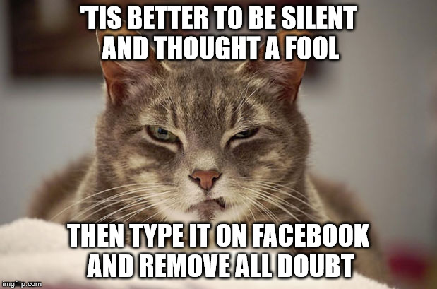'Tis Better | 'TIS BETTER TO BE SILENT AND THOUGHT A FOOL THEN TYPE IT ON FACEBOOK AND REMOVE ALL DOUBT | image tagged in disgusted,cat,facebook | made w/ Imgflip meme maker