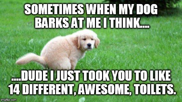 trmhn i love my dog imgflip