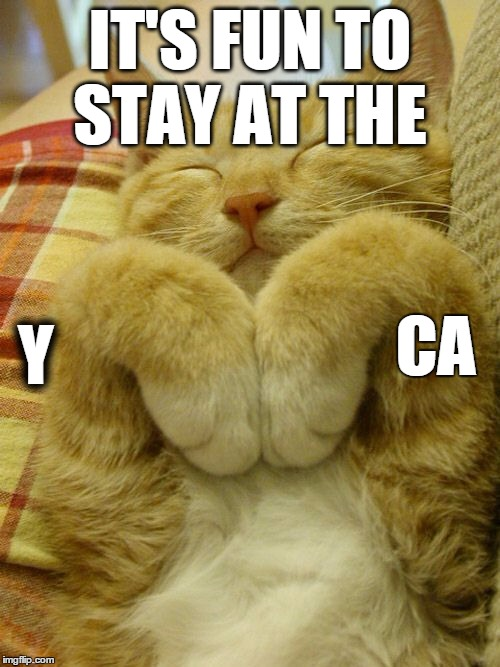 catm | IT'S FUN TO STAY AT THE Y CA | image tagged in catm | made w/ Imgflip meme maker
