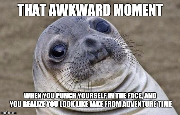 Awkward Moment Sealion Meme | THAT AWKWARD MOMENT WHEN YOU PUNCH YOURSELF IN THE FACE, AND YOU REALIZE YOU LOOK LIKE JAKE FROM ADVENTURE TIME | image tagged in memes,awkward moment sealion | made w/ Imgflip meme maker