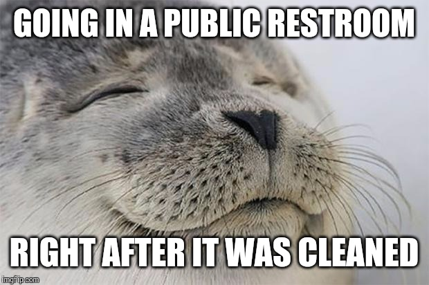 I can still smell the bleach | GOING IN A PUBLIC RESTROOM RIGHT AFTER IT WAS CLEANED | image tagged in memes,satisfied seal,bathroom,cleaning,AdviceAnimals | made w/ Imgflip meme maker