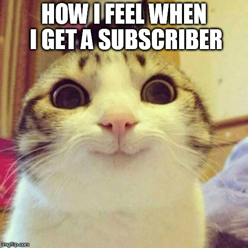 Smiling Cat Meme | HOW I FEEL WHEN I GET A SUBSCRIBER | image tagged in memes,smiling cat | made w/ Imgflip meme maker