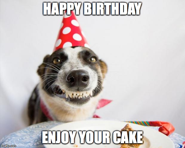 Puppy Birthday Cake Meme