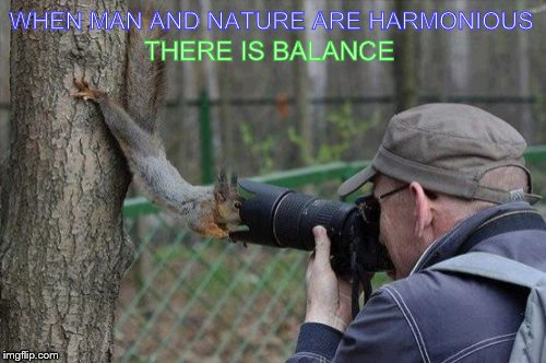 Jehovas Witness Squirrel | WHEN MAN AND NATURE ARE HARMONIOUS THERE IS BALANCE | image tagged in memes,jehovas witness squirrel | made w/ Imgflip meme maker