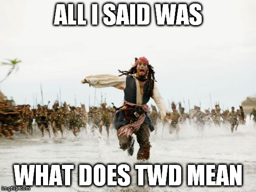 No really, I've never seen it | ALL I SAID WAS WHAT DOES TWD MEAN | image tagged in memes,jack sparrow being chased,twd | made w/ Imgflip meme maker