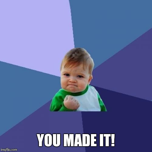 Success Kid Meme | YOU MADE IT! | image tagged in memes,success kid | made w/ Imgflip meme maker