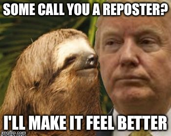 Political advice sloth | SOME CALL YOU A REPOSTER? I'LL MAKE IT FEEL BETTER | image tagged in political advice sloth | made w/ Imgflip meme maker