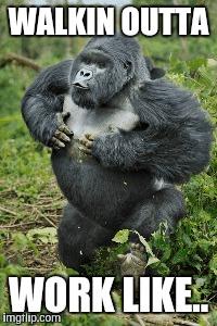 tu27m ape shit happy imgflip