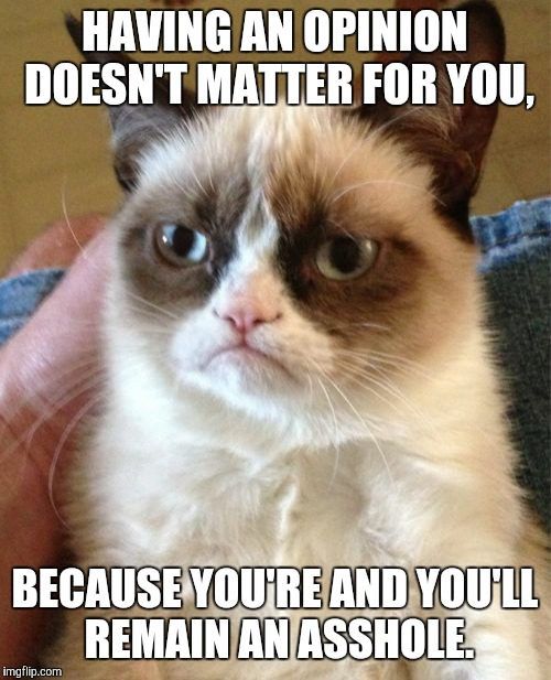 Grumpy Cat Meme | HAVING AN OPINION DOESN'T MATTER FOR YOU, BECAUSE YOU'RE AND YOU'LL REMAIN AN ASSHOLE. | image tagged in memes,grumpy cat | made w/ Imgflip meme maker