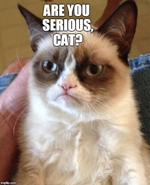 Grumpy Cat Meme | ARE YOU SERIOUS, CAT? | image tagged in memes,grumpy cat | made w/ Imgflip meme maker