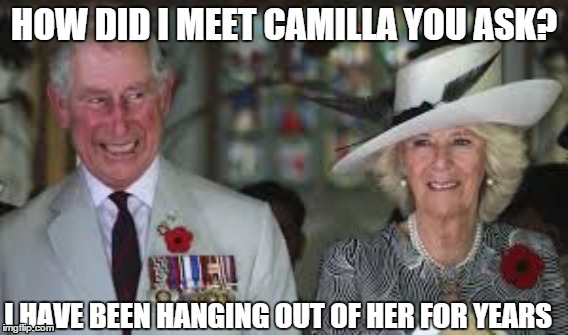 how we met | HOW DID I MEET CAMILLA YOU ASK? I HAVE BEEN HANGING OUT OF HER FOR YEARS | image tagged in charles,british royals | made w/ Imgflip meme maker