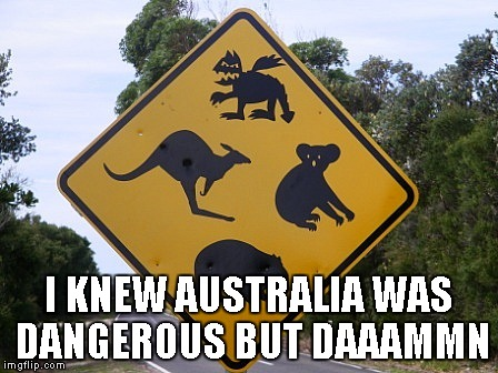 It could be true... | I KNEW AUSTRALIA WAS DANGEROUS BUT DAAAMMN | image tagged in the outback,australia,funny,mythical | made w/ Imgflip meme maker