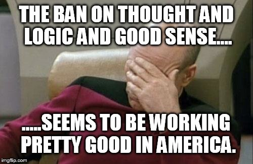 Captain Picard Facepalm Meme | THE BAN ON THOUGHT AND LOGIC AND GOOD SENSE.... .....SEEMS TO BE WORKING PRETTY GOOD IN AMERICA. | image tagged in memes,captain picard facepalm | made w/ Imgflip meme maker