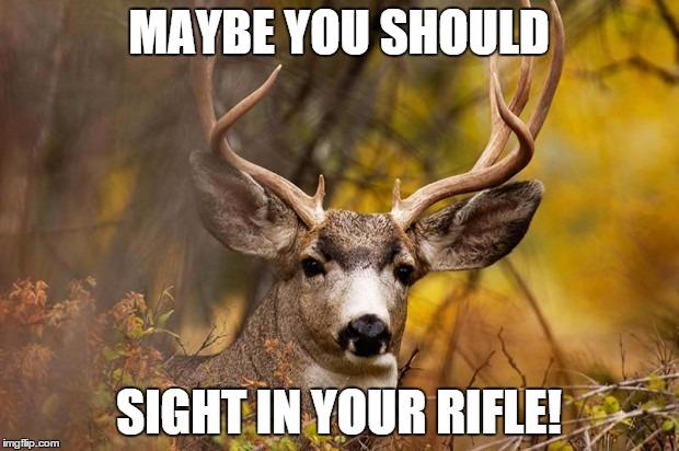 txls4 deer meme meme generator imgflip,Funny Deer Memes