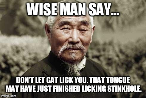 Wise man | WISE MAN SAY... DON'T LET CAT LICK YOU. THAT TONGUE MAY HAVE JUST FINISHED LICKING STINKHOLE. | image tagged in wise man | made w/ Imgflip meme maker