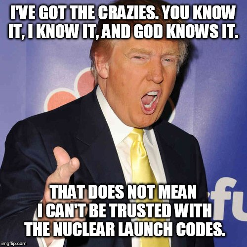 donald trump | I'VE GOT THE CRAZIES. YOU KNOW IT, I KNOW IT, AND GOD KNOWS IT. THAT DOES NOT MEAN I CAN'T BE TRUSTED WITH THE NUCLEAR LAUNCH CODES. | image tagged in donald trump | made w/ Imgflip meme maker
