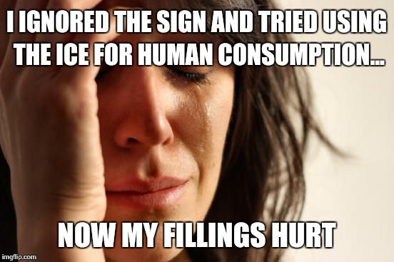 First World Problems Meme | I IGNORED THE SIGN AND TRIED USING THE ICE FOR HUMAN CONSUMPTION... NOW MY FILLINGS HURT | image tagged in memes,first world problems | made w/ Imgflip meme maker