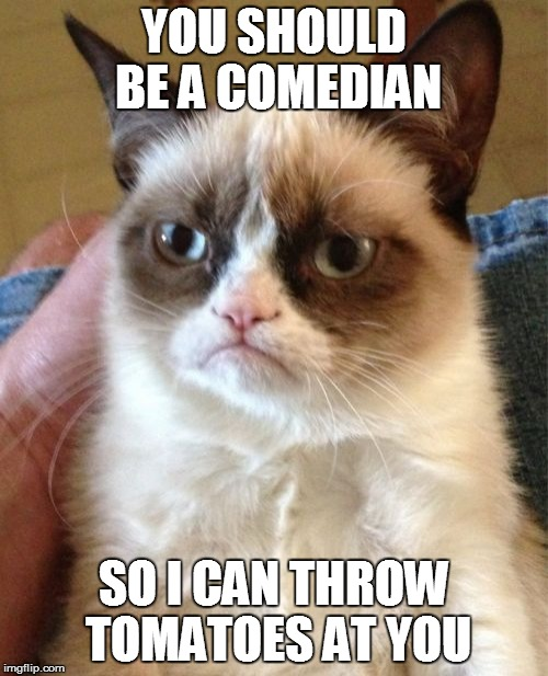 Grumpy Cat Meme | YOU SHOULD BE A COMEDIAN SO I CAN THROW TOMATOES AT YOU | image tagged in memes,grumpy cat | made w/ Imgflip meme maker