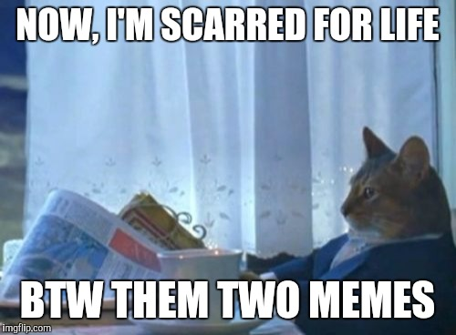 I Should Buy A Boat Cat Meme | NOW, I'M SCARRED FOR LIFE BTW THEM TWO MEMES | image tagged in memes,i should buy a boat cat | made w/ Imgflip meme maker
