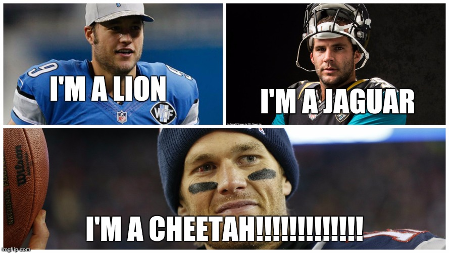 LOL. | I'M A LION I'M A CHEETAH!!!!!!!!!!!!! I'M A JAGUAR | image tagged in tom brady,cheetah,im a lion,im a jaguar,im a cheetah,nfl | made w/ Imgflip meme maker