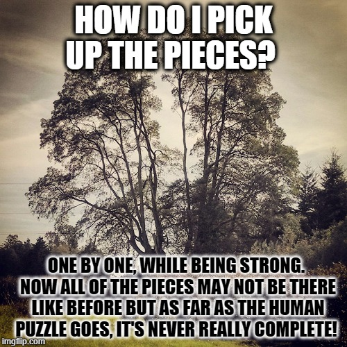 Tree Quote Inspirational | HOW DO I PICK UP THE PIECES? ONE BY ONE, WHILE BEING STRONG. NOW ALL OF THE PIECES MAY NOT BE THERE LIKE BEFORE BUT AS FAR AS THE HUMAN PUZZ | image tagged in tree quote inspirational | made w/ Imgflip meme maker