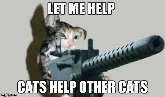 LET ME HELP CATS HELP OTHER CATS | made w/ Imgflip meme maker
