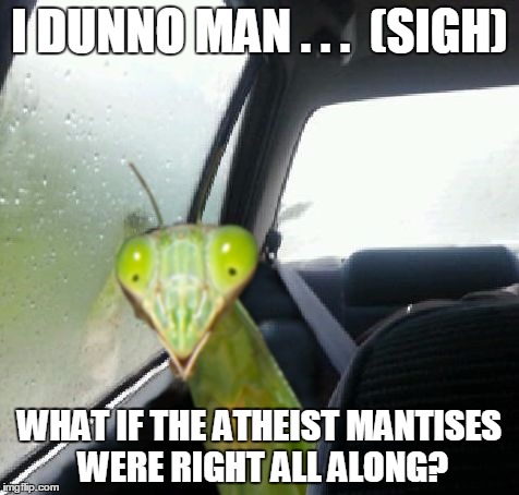 Sometimes a praying mantis has doubts, too... | I DUNNO MAN . . .  (SIGH) WHAT IF THE ATHEIST MANTISES WERE RIGHT ALL ALONG? | image tagged in introspective mantis,memes,funny,praying mantis,mantis | made w/ Imgflip meme maker