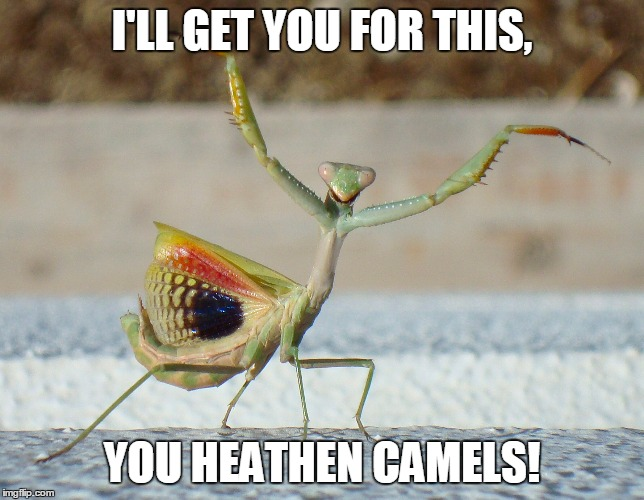 I'LL GET YOU FOR THIS, YOU HEATHEN CAMELS! | made w/ Imgflip meme maker
