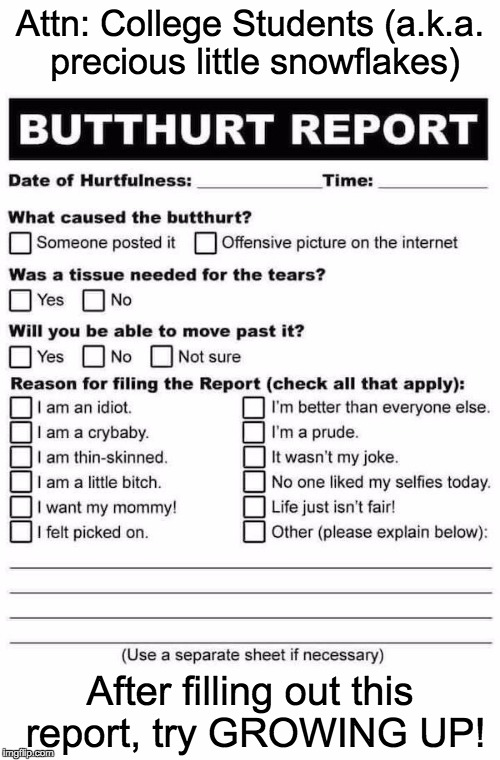 hurt feelings report template - image tagged in butthurt report imgflip