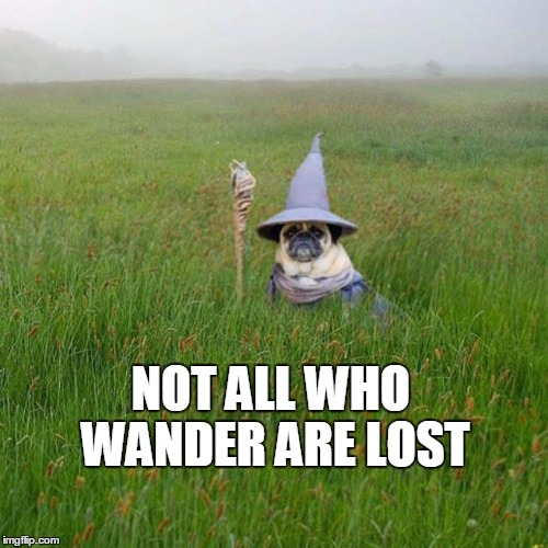 Not all who wander are lost | NOT ALL WHO WANDER ARE LOST | image tagged in pugdalf,memes | made w/ Imgflip meme maker