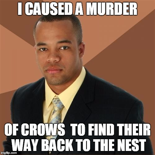 Successful Black Man | I CAUSED A MURDER OF CROWS  TO FIND THEIR WAY BACK TO THE NEST | image tagged in memes,successful black man | made w/ Imgflip meme maker