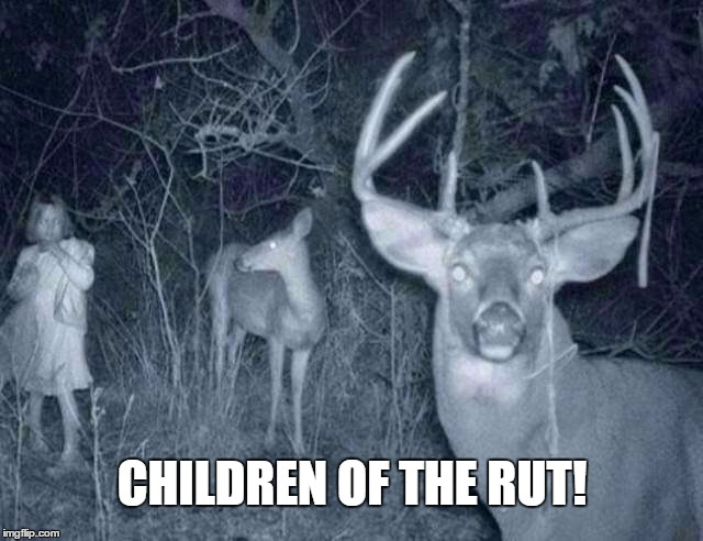 Children of the rut! | CHILDREN OF THE RUT! | image tagged in deer,creepy,hunting,memes,spooky,camera | made w/ Imgflip meme maker