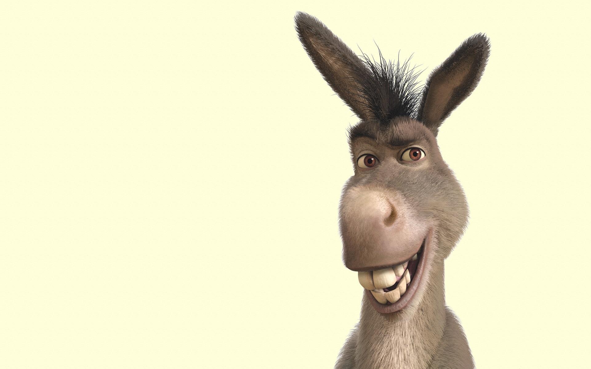 Donkey Blank Template - Imgflip