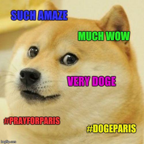 Doge Much Wow