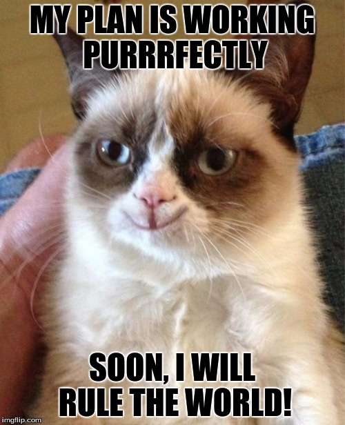 Grumpy Cat Happy | MY PLAN IS WORKING PURRRFECTLY SOON, I WILL RULE THE WORLD! | image tagged in happy grumpy cat | made w/ Imgflip meme maker