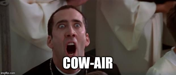 nic cage 1 | COW-AIR | image tagged in nic cage 1 | made w/ Imgflip meme maker