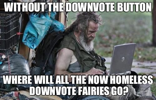 Homeless_PC | WITHOUT THE DOWNVOTE BUTTON WHERE WILL ALL THE NOW HOMELESS DOWNVOTE FAIRIES GO? | image tagged in homeless_pc | made w/ Imgflip meme maker