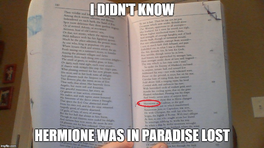 Wait wut.  | I DIDN'T KNOW HERMIONE WAS IN PARADISE LOST | image tagged in harry potter,memes | made w/ Imgflip meme maker